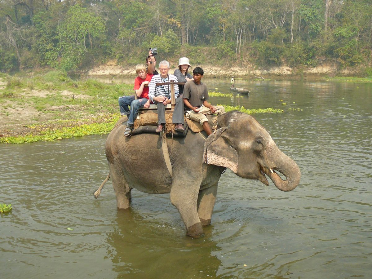 A complete wildlife tour in Nepal